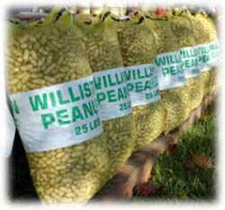 Williston Peanut Festival